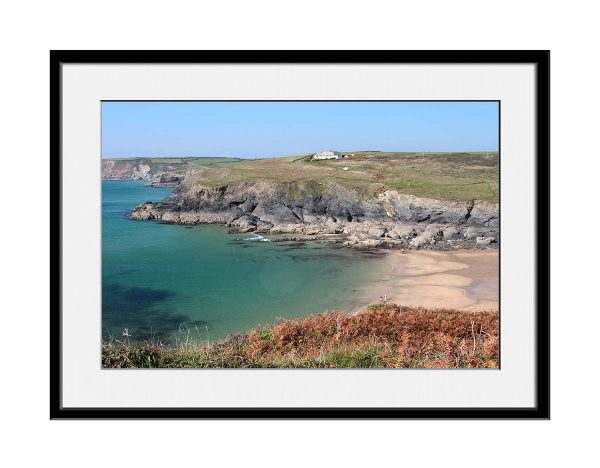salty-old-sea-dog-cornish-coast04