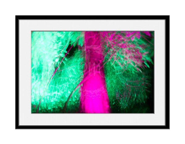 paul-mahoney-contemporary-photography11